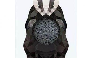 Konjac Gąbka Mini Borsuk z Węglem Bambusowym
