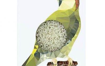 Konjac Gąbka Mini Dzięcioł z Zieloną Glinką