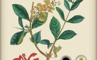 Miksohenna Henna – Lawsonia inermis 100% 100g
